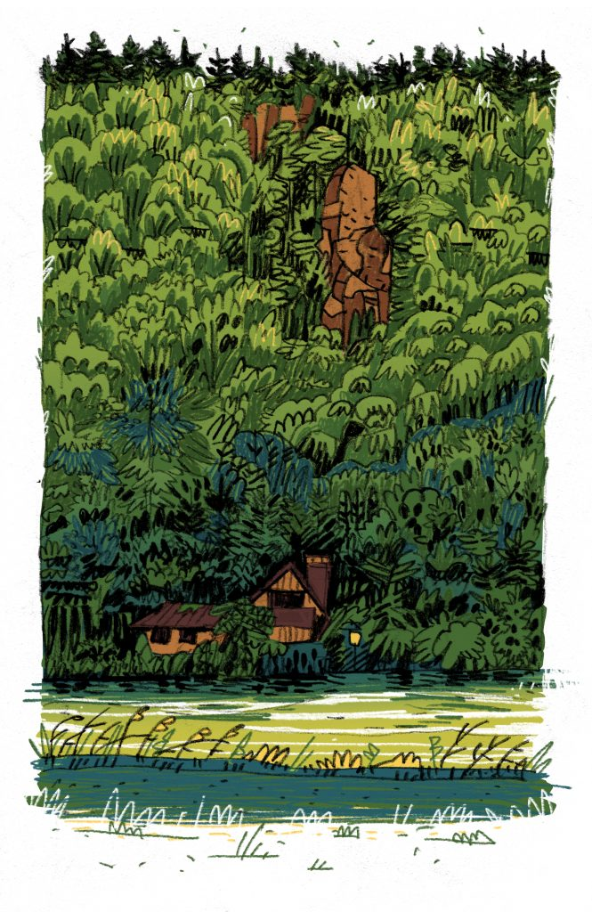 This is an illustration made for editorial purposes (especially magazines). It's a river and is called Danube. We can see with some difficulties an house. It's a camouflage house with a lot of trees and plants around. Made by Dimitri Fogolin.